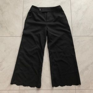 Never been worn high-rise pants